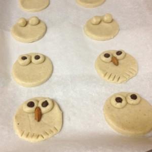 owl-cookies-400b-300x300-2